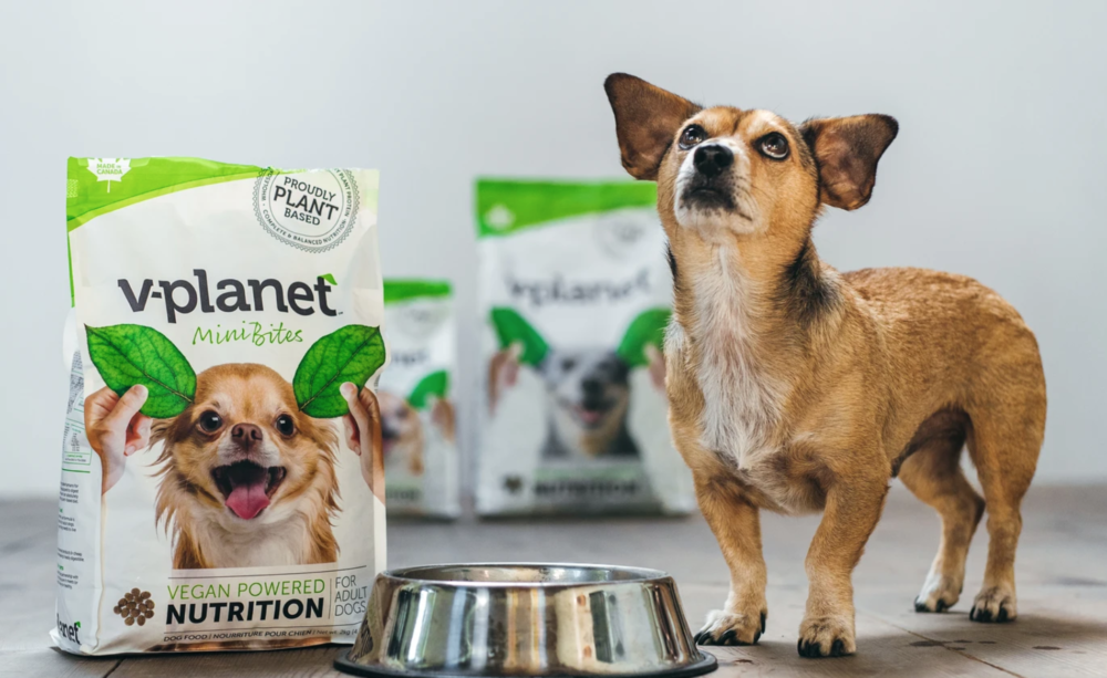 V-planet introduces line of vegan dog products in Thailand