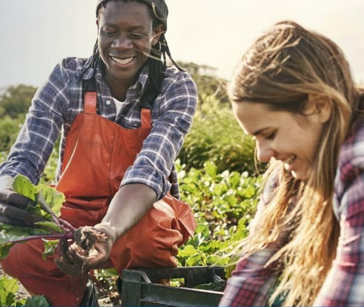 Pure Farmland™ Supports America's Community Gardens and Farms Through Launch of Pure Growth Project