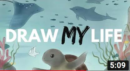 SEA TURTLE 'DRAW MY LIFE' VIDEO: DEEP SEA BOTTOM TRAWLING EXPOSED