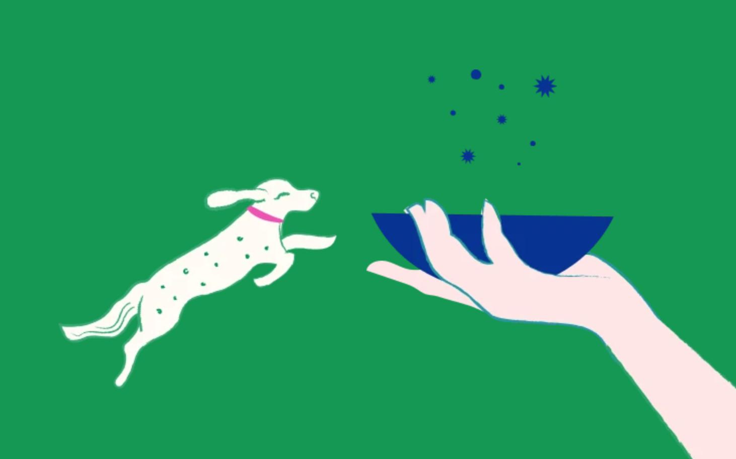 New vegan dog treats with beta glucan – why? Because, Animals